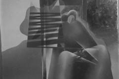 larcolaio-1933
